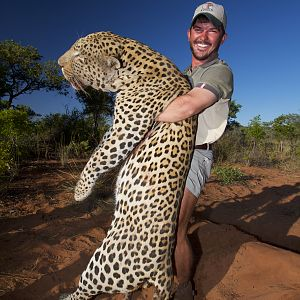 Leopard Hunting Namibia