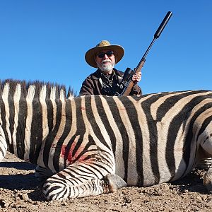 Burchell's Plain Zebra Hunting Free State South Africa