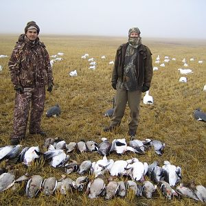 Geese Hunt Canada