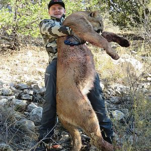 Mountain Lion Hunt Arizona USA