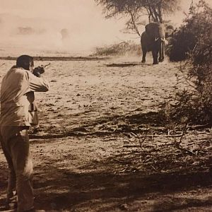 Elephant Hunt with John Wayne Hatari
