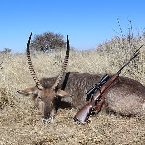 Nothing like a good Waterbuck