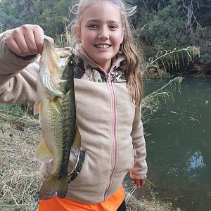 South Africa Fishing Bass