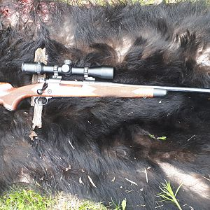 Winchester Model 70 Rifle in 30-06