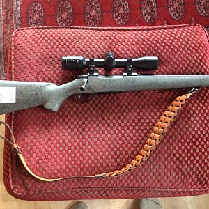 Nosler 48 in 35 Whelen Rifle