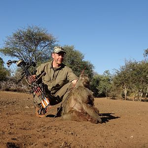 Baboon Bow Hunting South Africa