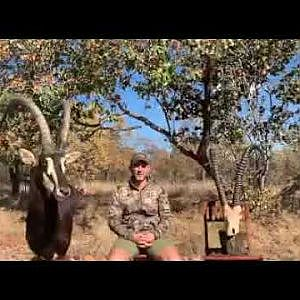 Tsala Safaris Intro to Sable Hunting
