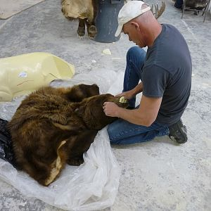 Behind the Scenes: Bear Mount