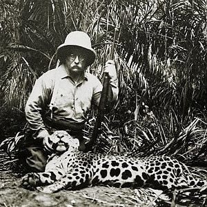 Theodore Roosevelt Hunting Leopard