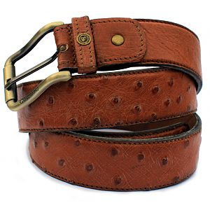 Ostrich Belt Courteney from African Sporting Creations