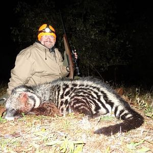 Civet Hunting Sunset Safaris