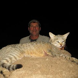 African Wildcat Hunting Sunset Safaris