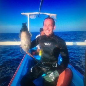 Spearfishing Leatherjacket Fish in Indonesia