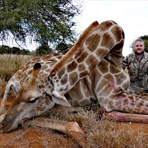 South Africa Bow Hunt Giraffe