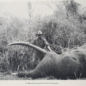 Hunting Elephant from the book African Hunter by Bror von Blixen-Finecke