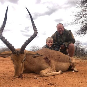 Impala Bow Hunt South Africa