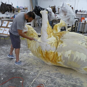 White Rhino Mounting Process