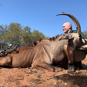 Roan Bow Hunting South Africa