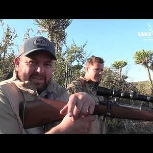 Nyala Hunt with Rance Safaris