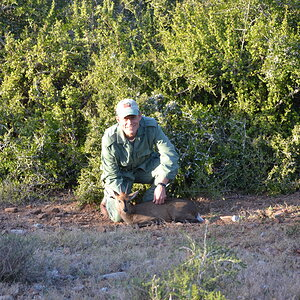 South Africa Hunting Duiker
