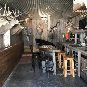 Trophy Room & Bar