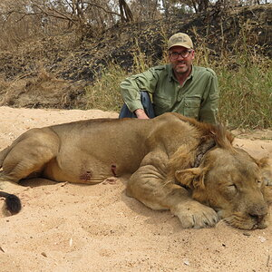 Hunting Lion in Cameroon