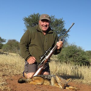 Hunt Jackal in South Africa