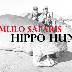 Hunting Hippo with Umlilo Safaris