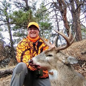 USA Hunt White-tailed Deer