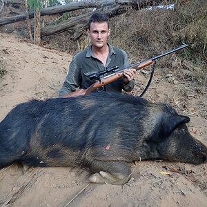 Hunt Boar in Australia