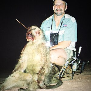 Baboon Hunting South Africa