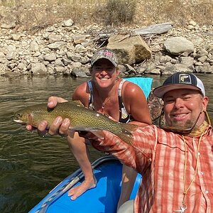 Montana USA Fly Fishing Rainbow Trout