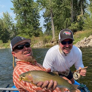 Brown Trout Fly Fishing Montana USA