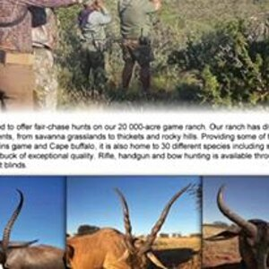 Waterbuck Hunt with Hartzview Safaris