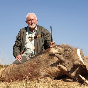 South Africa Hunt Warthog