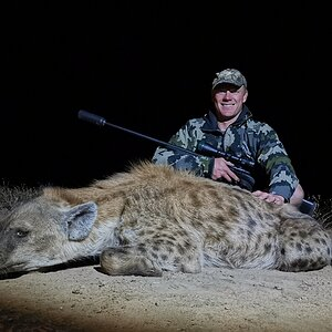 Hunting Spotted Hyena in South Africa