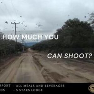 Doves & Pigeon Hunting with MG Hunting Argentina