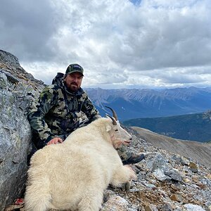 Mountain Goat Hunting Northern British Columbia Canada