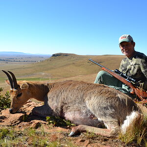 Mountain Reedbuck Hunt South Africa