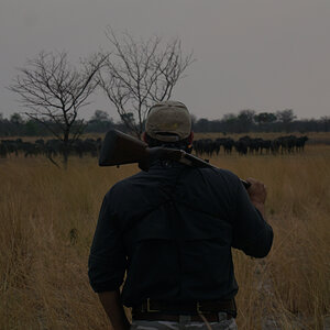 Hunting in the Caprivi Strip of Namibia