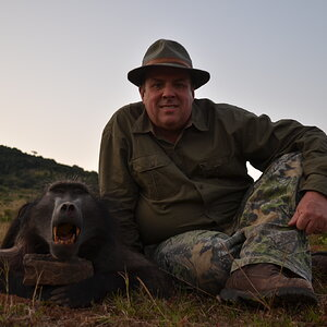 South Africa Hunting Baboon