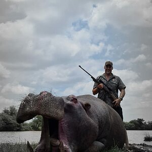 Hippo Hunt South Africa