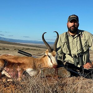 Springbok Hunt South Africa