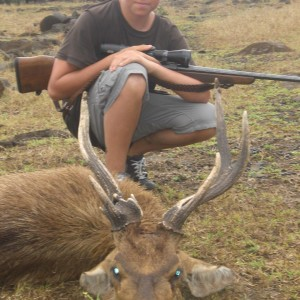 My son's atypical Rusa Deer which is what he was looking for