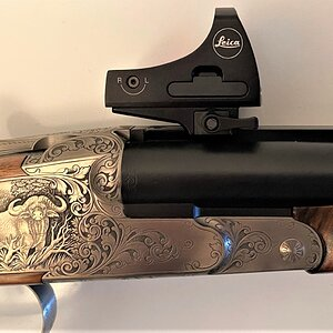 Pump-action Shotgun With Leica Tempus Sight