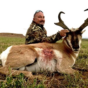 Hunting Pronghorn