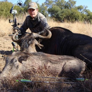 Hunting trip South Africa - my first Blue Wilderbeest and Warthog