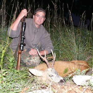 Roe Deer hunt Latvia