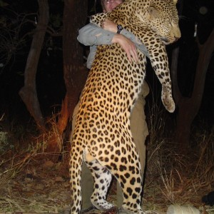 Monster Leopard hunted in Zambia with Prohunt Zambia