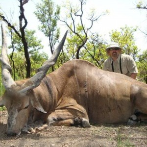 Lord Derby Eland hunted with CAWA in CAR